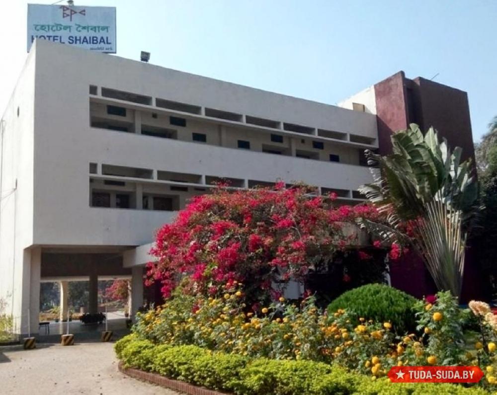 Отель Shaibal
